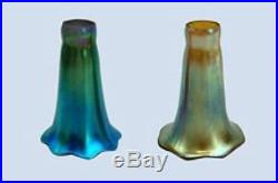 (2) Tiffany Style Lilies Glass Lamp Light Shades ART DECO arts & crafts NOUVEAU